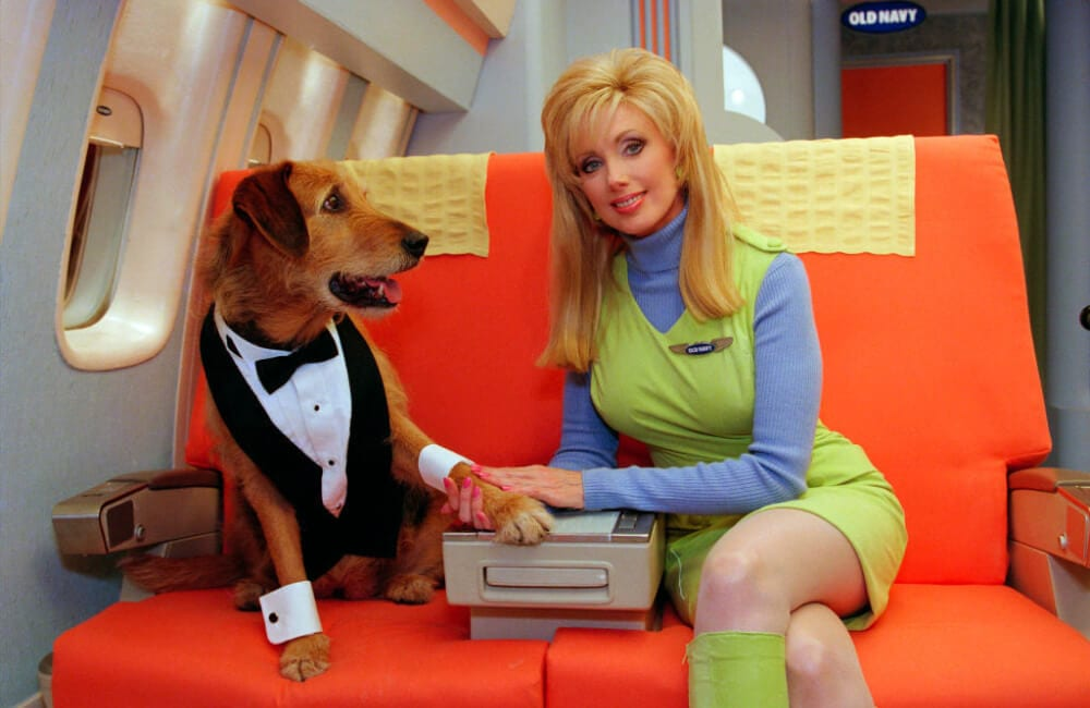Morgan Fairchild & Magic OLD NAVY ©Lawrence Schwartzwald/Sygma via Getty Images